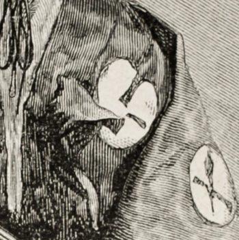wanddoek WAKUMI en zelfklevend behangcirkel ZAIBATSU close up