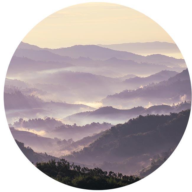 zelfklevend-behang-cirkel-ZANDI-lila