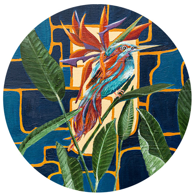zelfklevend-behang-cirkel-PARADISE-BIRD