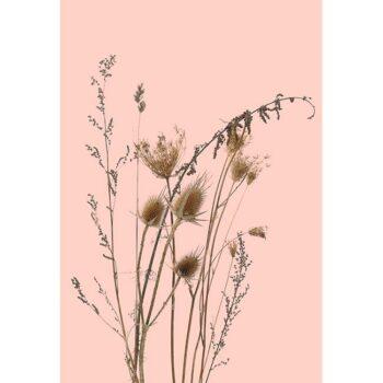 behangpaneel-BREE-roze