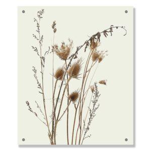 tuinposter-ISAE-gebroken-wit