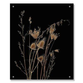 tuinposter-ISAE-zwart