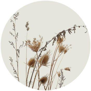 zelfklevend-behang-cirkel-ZENNO-gebroken-wit