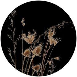 zelfklevend-behang-cirkel-ZENNO